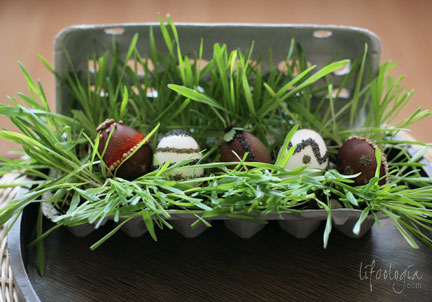 IMG_5757-easter-eggs-decorating-natural-style