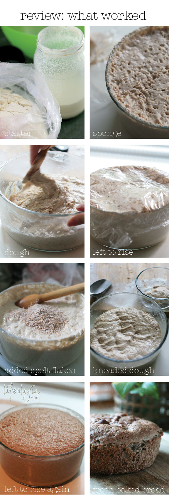 sourdough bread4 steps
