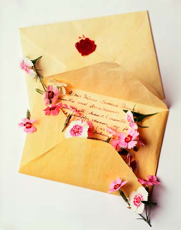 Love Letters  Pure Ella