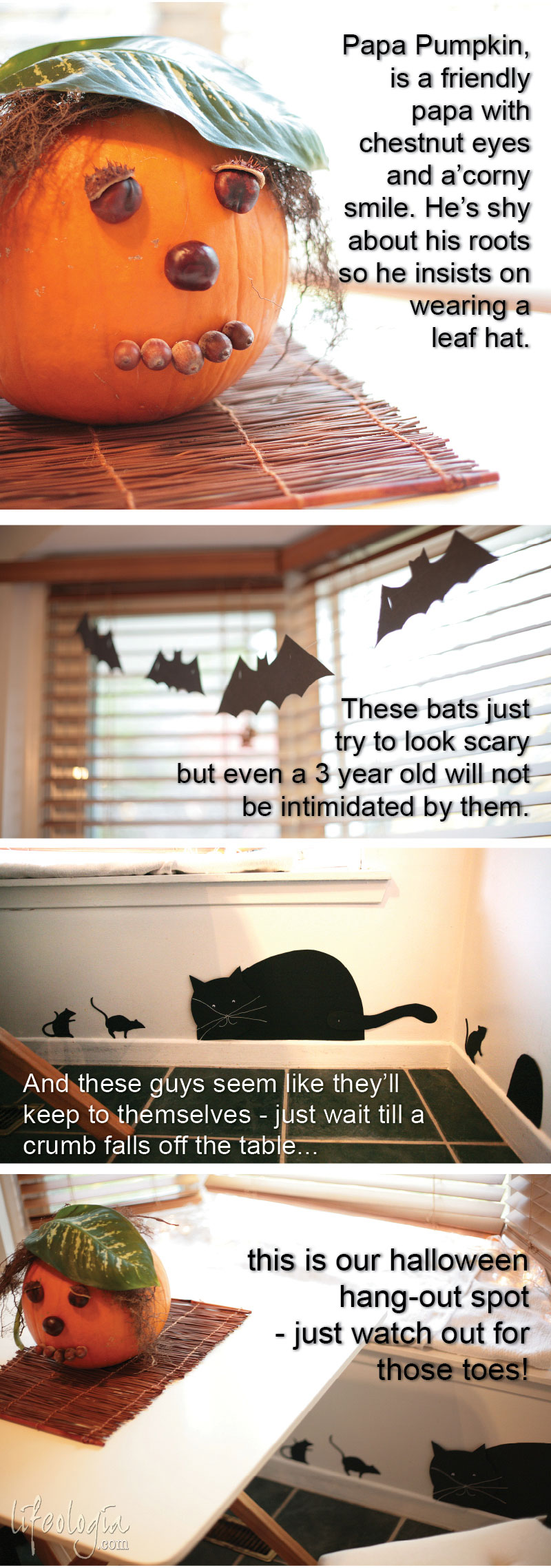 halloween-decorations inexpensive diy cat, mouse, bats, creative pumpkin