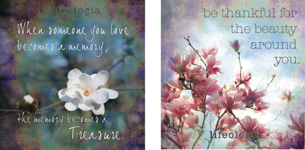 lifeologia-inspirational-photography-posters3