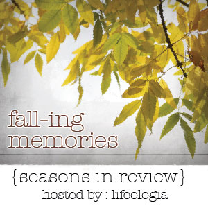 seasons-in-review-falling-memories